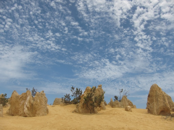 33. Pinnacles - the rocks
